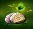 Flea Brains (Image Shop)