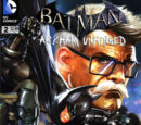 Batman: Arkham Unhinged Vol 1 2
