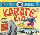 Karate Kid Vol 1 2