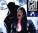 Catwoman Vol 3 45