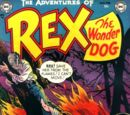Adventures of Rex the Wonder Dog Vol 1 1