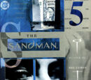 Sandman Vol 2 45