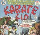 Karate Kid Vol 1 5