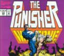 The Punisher War Zone Vol 1 29