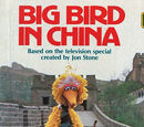 Big Bird in China (book)