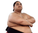 Rodney Anoa'i