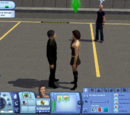 Socializing in The Sims 3 era