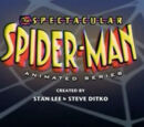 The Spectacular Spider-Man (2008 TV series)