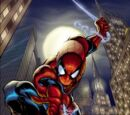 Spider-Man: Shattered Dimensions Characters
