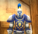 Stormwind City Guard (NPC)