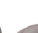 Rambi the Rhinoceros