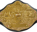 PCW World Heavyweight Championship