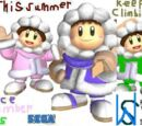 Ice Climber DS