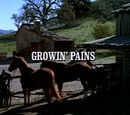 Episode 803: Growing Pains