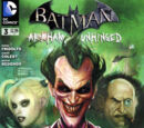 Batman: Arkham Unhinged Vol 1 3