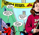 Gotham Heights