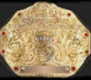 World Heavyweight Championship (WEDF)