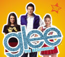Glee: The Beginning (Novel)