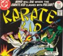 Karate Kid Vol 1 8
