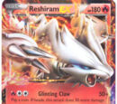 Reshiram EX (Black and White Next Destinies - 22)