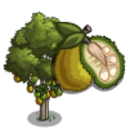 Jaca Tree-icon.png