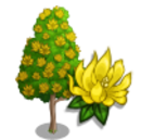 Champak Tree-icon.png