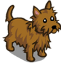 Wheaten Cairne Dog-icon.png