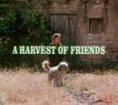 Episode 102: A Harvest of Friends