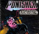 Punisher Vol 3 1
