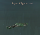 Bayou Alligator