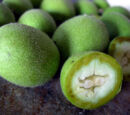 Green walnut