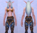 Velen's Leggings of Conquest