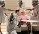 Beauty School Drop Out