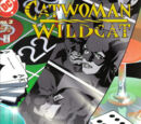Catwoman/Wildcat Vol 1 2