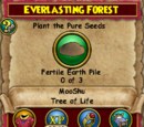 Everlasting Forest