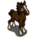 Hackney Foal-icon.png