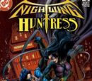 Nightwing/Huntress Vol 1 2