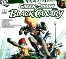 Green Arrow and Black Canary Vol 1 28