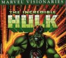Hulk Visionaries: Peter David Vol 1 8