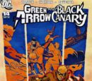 Green Arrow and Black Canary Vol 1 14