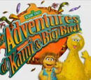 The Adventures of Kami and Big Bird
