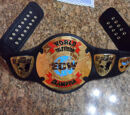 OWA Intercontinental Championship