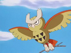Noctowl Brillante