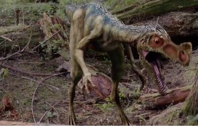 http://images2.wikia.nocookie.net/__cb20121211231404/primeval/images/thumb/6/65/Ornitholestes.jpg/400px-Ornitholestes.jpg
