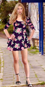 190px-Sandra_W_Pain88_Skater_Dress.jpg